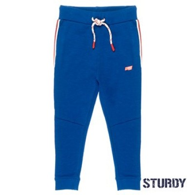 Sturdy Sweatpants Trillseeker Blue