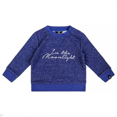 Foto van Beebielove baby boys Sweater Moonlight SRF