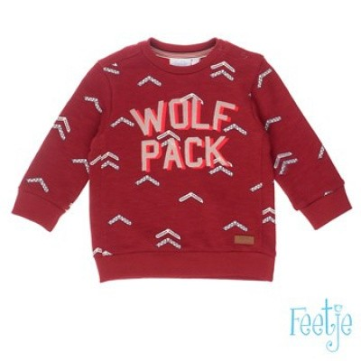 Feetje baby boy Sweater all over print Wolf pack - Good fellows Donker rood