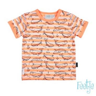 Foto van Feetje newborn Boys T-Shirt All over print/Streep Neon Oranje Mr Good Looks