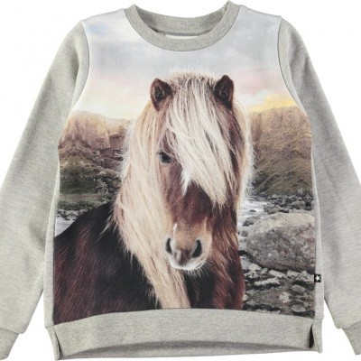Foto van Molo girls sweater Marlee Icelandic horse