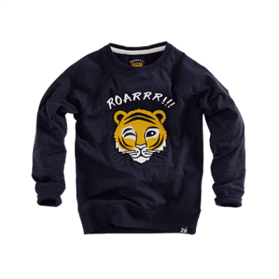 Foto van Z8 boys sweater Pim