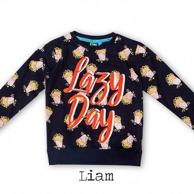 Foto van B'chill sweater Liam