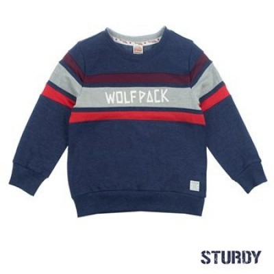 Foto van Sturdy Sweater Wolf Pack - Good Felllows