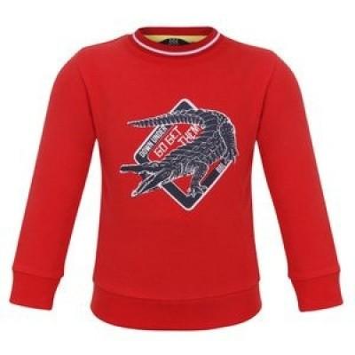 Foto van Beebielove Sweater Checklist To hunt For
