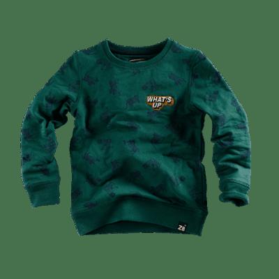 Z8 boy sweater Bill