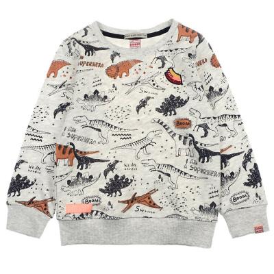 Foto van Sturdy boys sweater