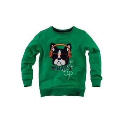 Foto van Z8 boys Pepijn Sweater Groovy Green