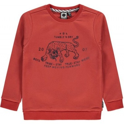 Foto van Tumble n dry boys sweater Vico terracotta