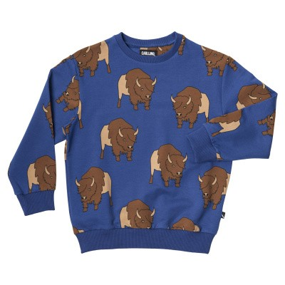 Foto van CarlijnQ boys Bison-Sweater blauw all over print Bison