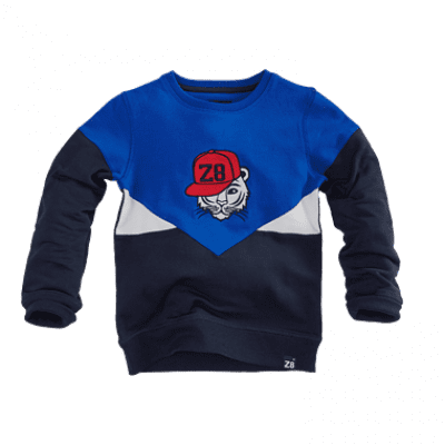 Foto van Z8 boys sweater Marco brilliant blue