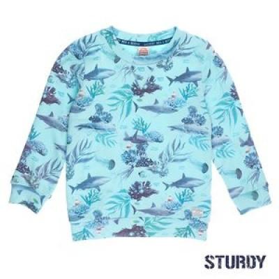 Foto van Sturdy Sweater AOP Scuba Mint