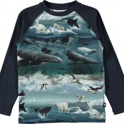 Molo boys longsleeve Remington landscape