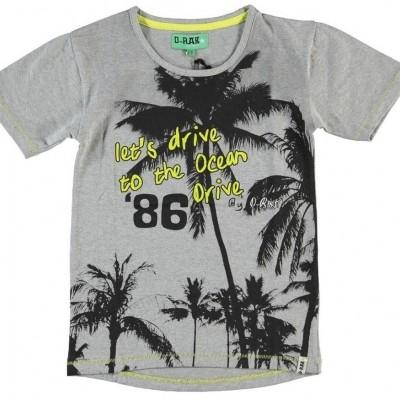 D-rak boys t-shirt grey