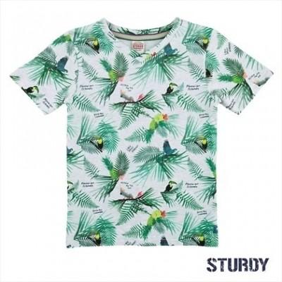 Foto van Sturdy t-shirt grijs melange Island
