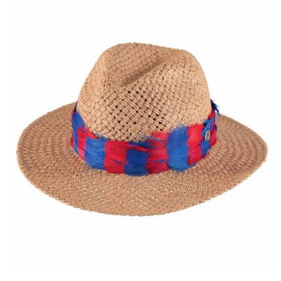 Foto van Birds On The Run Fedora Feather Trim Red Blue