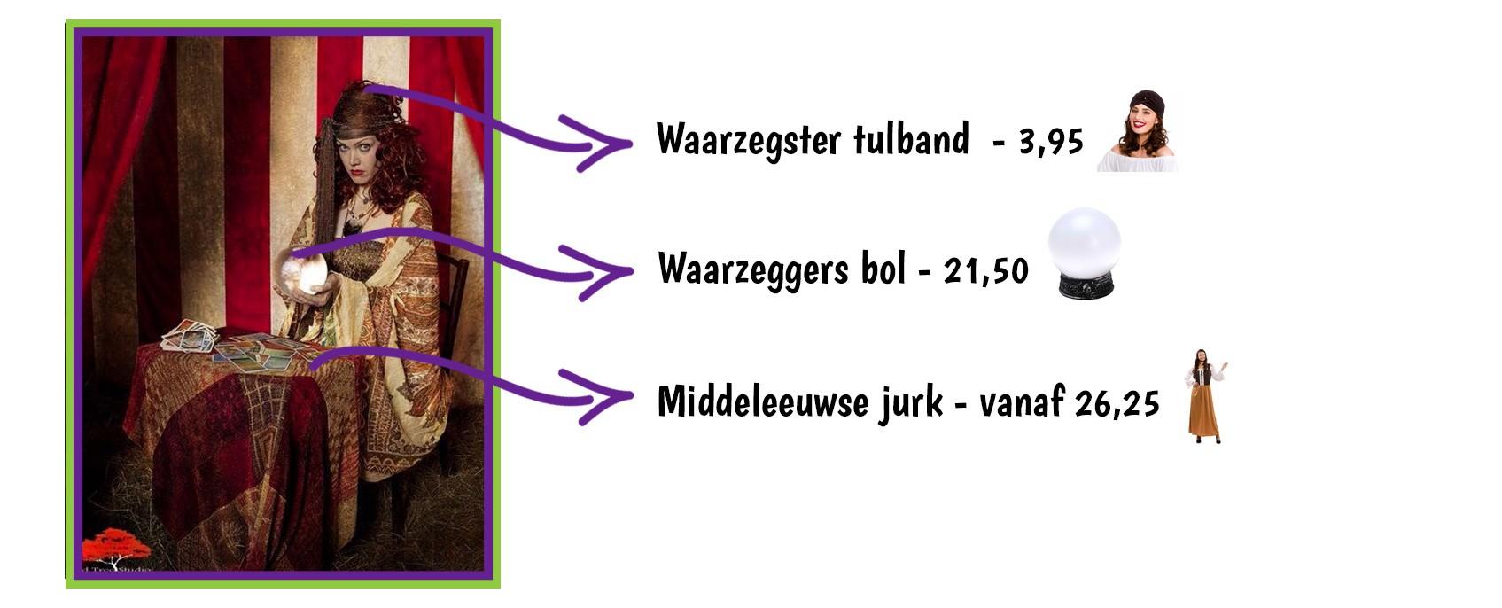 9417309350-CoenSander_waarzegster.jpg