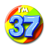 Afbeelding van Button 37 jaar