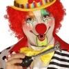 Afbeelding van Clowns Hoorn