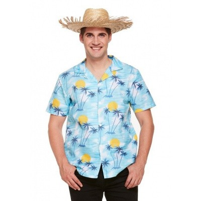 Foto van Shirt Hawaii heren