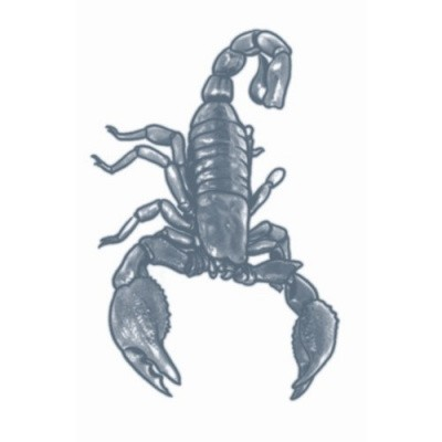 Foto van Scorpion Tattoo