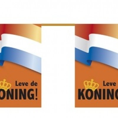 Foto van St. Papieren vlaggenlijn 'Leve de koning!' (6 m, 10 vlaggen) brandvertragend