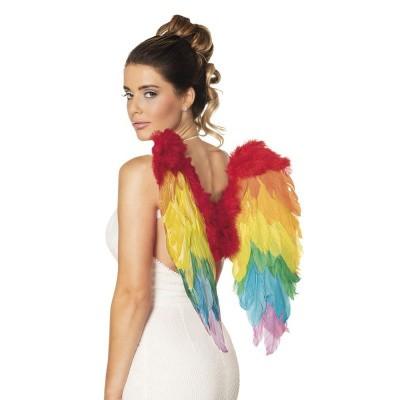 Foto van Engelen vleugels regenboog