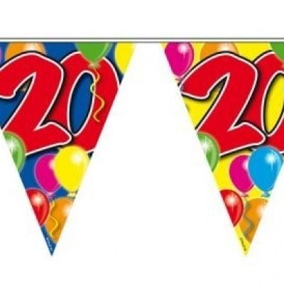 Vlaggenlijn balloons 20 jaar 10M