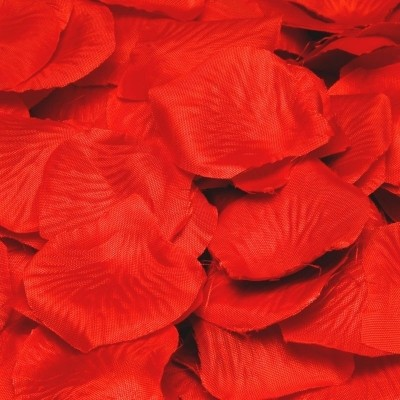Foto van Luxe Rode Rozenblaadjes PBH/144stk