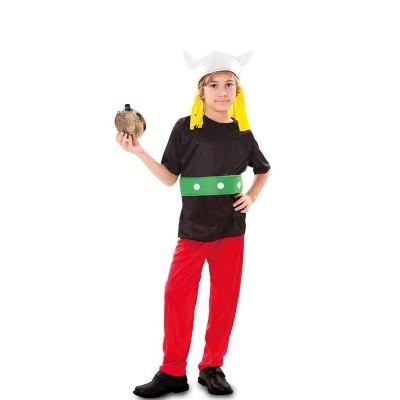 Foto van Asterix kostuum kind