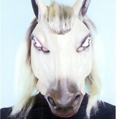Foto van Masker Paard