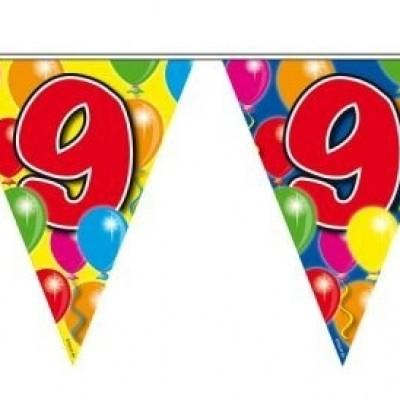 Foto van Vlaggenlijn balloons 9 jaar 10m/stk