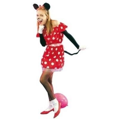 Foto van Minnie mouse kostuum