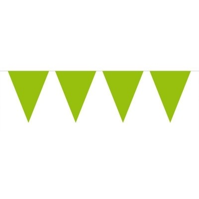 Foto van Mini Vlaggenlijn Lime Groen /3mtr
