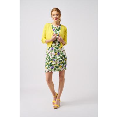 Foto van Smashed Lemon jurk citroen meerkleurig 20079