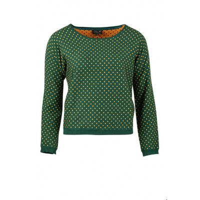 Foto van Zilch top sweater polkadot groen