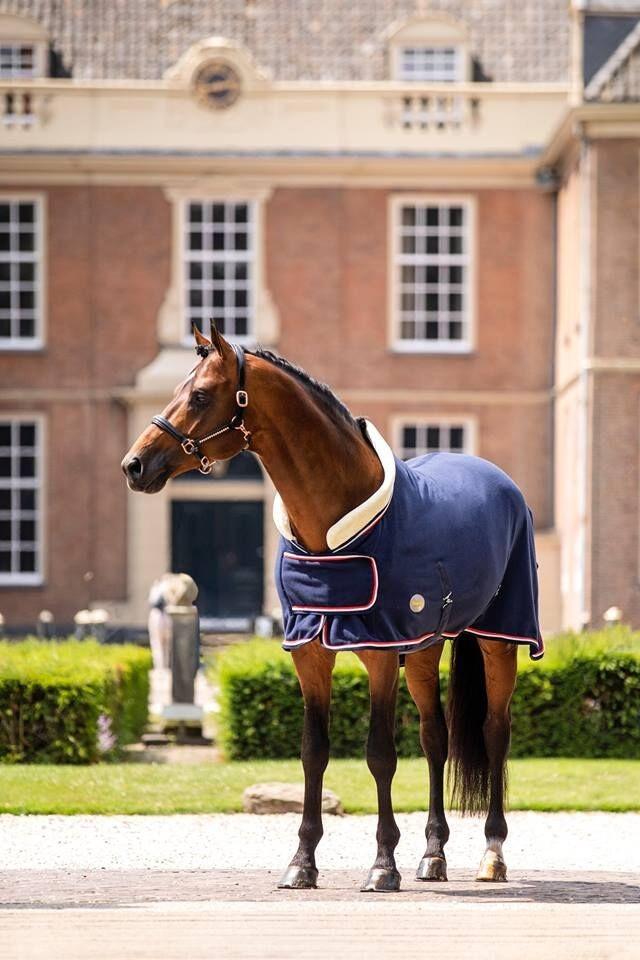 Showtime Dutch Crown fleecedeken blauw
