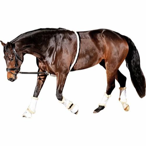 Horse Guard zacht longeerhulp
