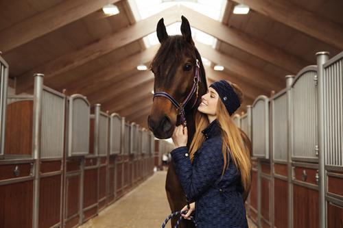 Horse Guard gestreept halster rose gold