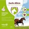 Afbeelding van Garlic Allicin Granulate EU (Knoflook granulaat) 750 g