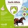 Afbeelding van Garlic Allicin Powder EU( Knoflook poeder) 2,5 kg