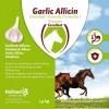 Afbeelding van Garlic Allicin Liquid EU (Knoflook vloeibaar)