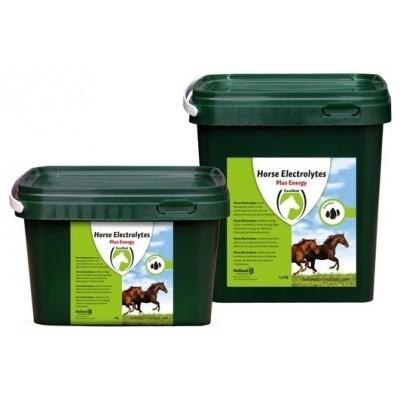Foto van horse electrolytes powder
