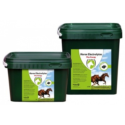 Horse Electrolytes Powder 2,5 kg