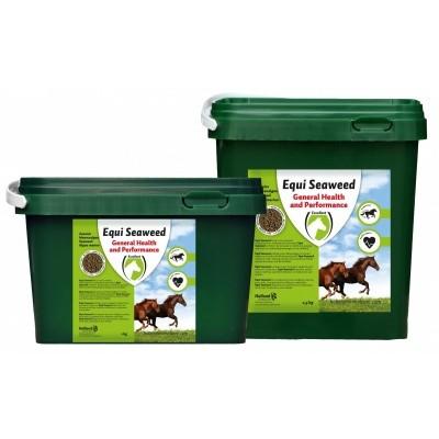Equi Seaweed pellets (Zeewier) 1 kg