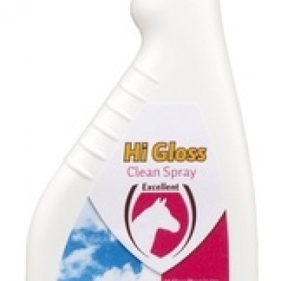 Hi Gloss Clean Spray 500 ml