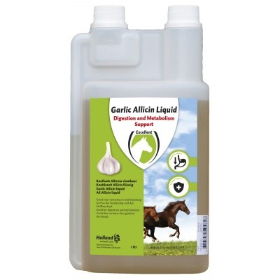 Garlic Allicin Liquid EU (Knoflook vloeibaar)
