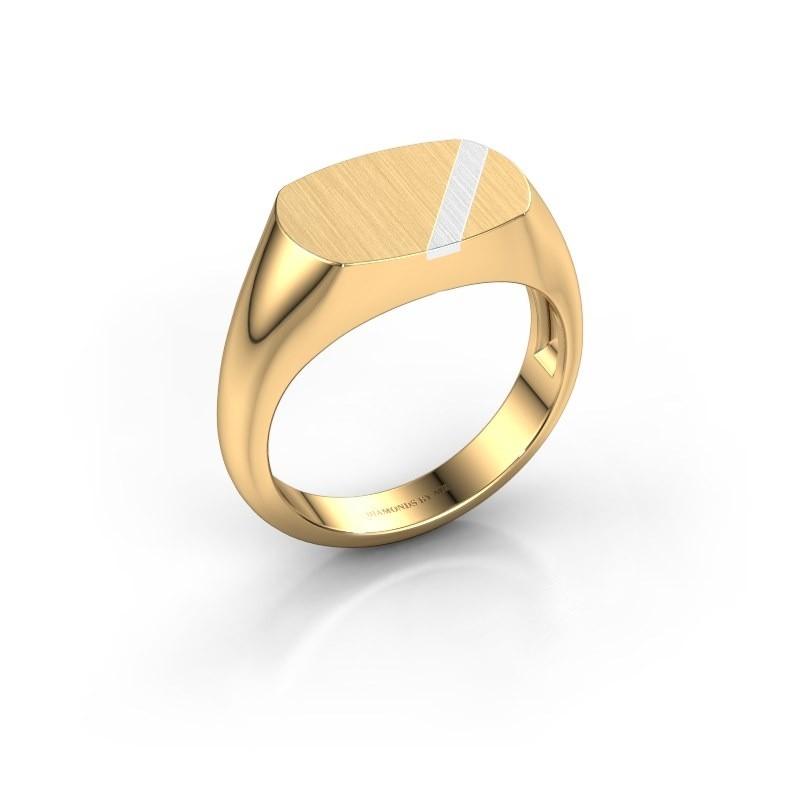 Heren ring Bram 1 585 goud