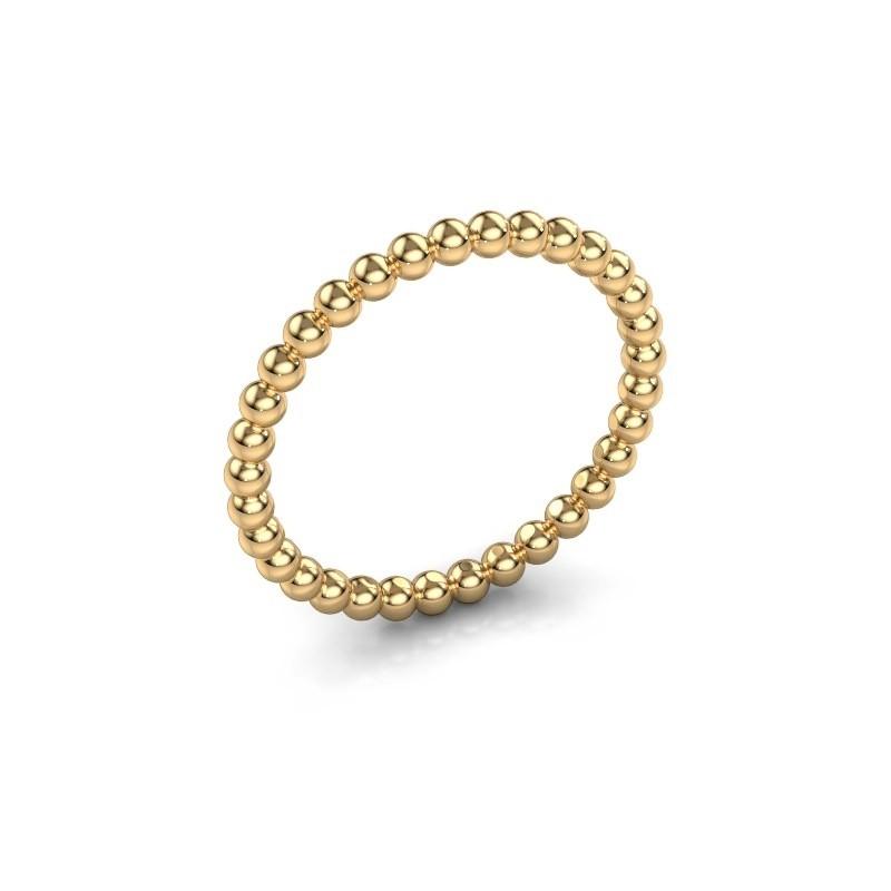 Aanschuifring Dani 2mm 585 goud