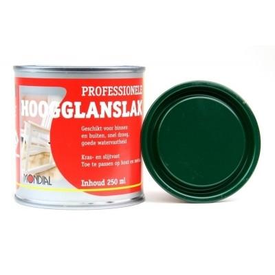 Mondial Zaansgroen Hoogglans 250ML